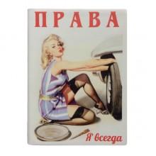 """Обложка на автодокументы Модель """"Классик с УФ"""""""